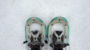 Snowshoe 101